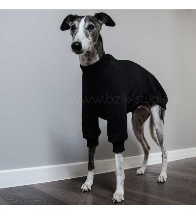 Bluza dresowa (charcik włoski, whippet)