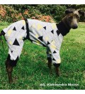 Dres/piżamka trójkąty (charcik włoski, whippet)